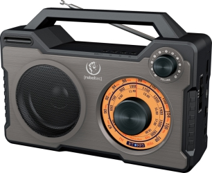 Głośnik Bluetooth RODOS przenośne radio 10W USB FM microSD AUX